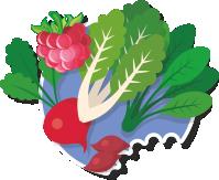 Cocinar es de Guapas - Especiales - Elementos veganos