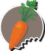Cocinar es de guapas - Zanahoria - ingredientes veganos